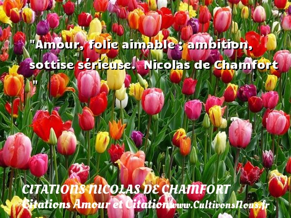 Citations Nicolas de Chamfort - Citations Amour et Citations - Amour, folie aimable ; ambition, sottise sérieuse.   Nicolas de Chamfort    CITATIONS NICOLAS DE CHAMFORT