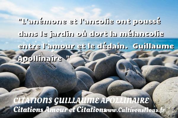 L Anémone Et L Ancolie Citations Guillaume Apollinaire