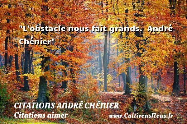 L obstacle nous fait grands.   André Chénier   Une citation sur aimer   CITATIONS ANDRÉ CHÉNIER - Citations André Chénier - Citations aimer