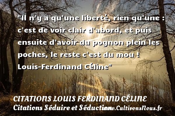 Il n y a qu une liberté, rien qu une : c est de voir clair d abord, et puis ensuite d avoir du pognon plein les poches, le reste c est du mou !   Louis-Ferdinand Céline   Une citation sur séduire et séduction   CITATIONS LOUIS FERDINAND CÉLINE - Citations Louis Ferdinand Céline - Citations Séduire et Séduction
