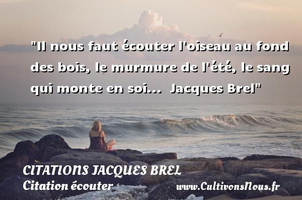 Citations Jacques Brel - Citation écouter - Il nous faut écouter l oiseau au fond des bois, le murmure de l été, le sang qui monte en soi...   Jacques Brel   Une citation sur écouter   CITATIONS JACQUES BREL