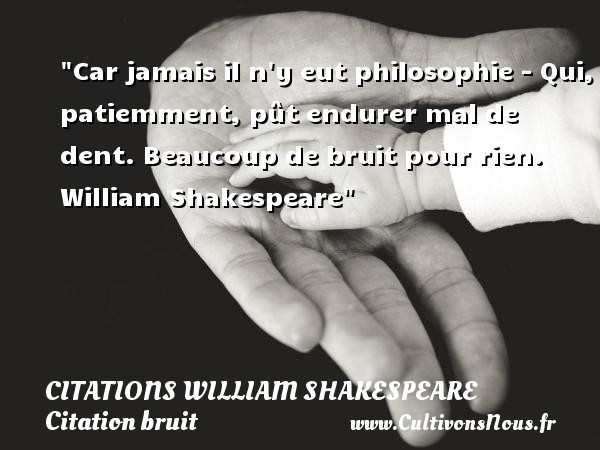 citation-bruit