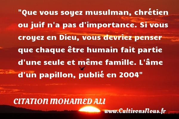 citation-papillon