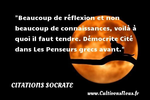 citation-reflexion