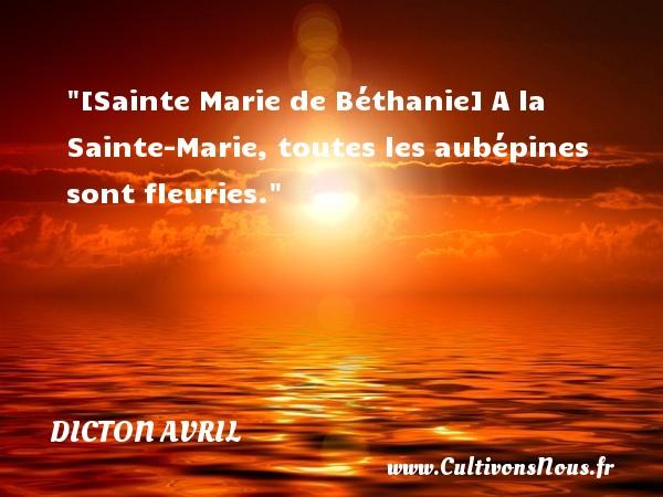 Dicton avril - [Sainte Marie de Béthanie] A la Sainte-Marie, toutes les aubépines sont fleuries. Un dicton avril DICTON AVRIL