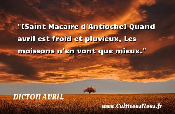 Dicton avril - [Saint Macaire d Antioche] Quand avril est froid et pluvieux, Les moissons n en vont que mieux. Un dicton avril DICTON AVRIL