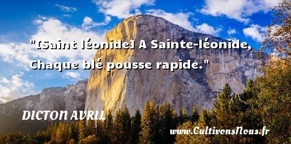 [Saint léonide] A Sainte-léonide, Chaque blé pousse rapide. Un dicton avril