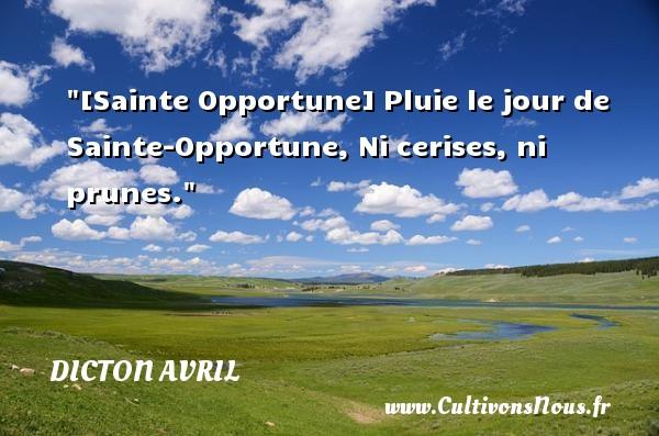 Dicton avril - [Sainte Opportune] Pluie le jour de Sainte-Opportune, Ni cerises, ni prunes. Un dicton avril DICTON AVRIL