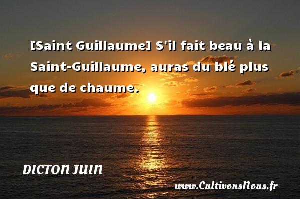 [Saint Guillaume] S il fait beau à la Saint-Guillaume, auras du blé plus que de chaume. Un dicton juin