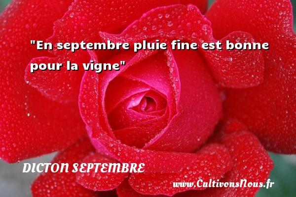 Dicton septembre - En septembre pluie fine est bonne pour la vigne Un dicton septembre DICTON SEPTEMBRE
