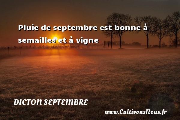 Dicton septembre - Pluie de septembre est bonne à semailles et à vigne Un dicton septembre DICTON SEPTEMBRE