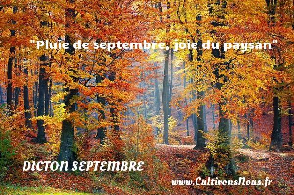 Pluie de septembre, joie du paysan Un dicton septembre