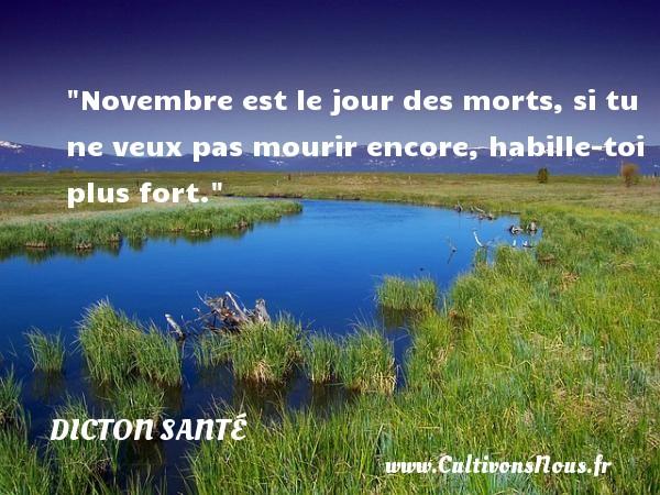 Novembre est le jour des morts, si tu ne veux pas mourir encore, habille-toi plus fort. Un dicton santé DICTON SANTÉ