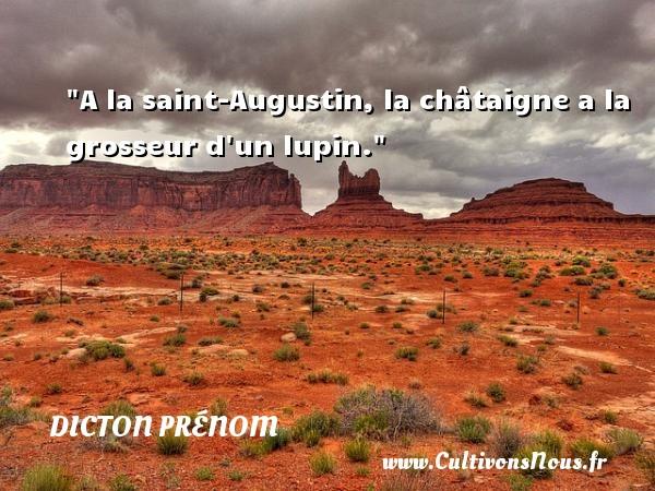 A la saint-Augustin, la châtaigne a la grosseur d un lupin. Un dicton prénom DICTON PRÉNOM