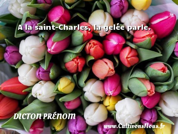 A la saint-Charles, la gelée parle. Un dicton prénom DICTON PRÉNOM