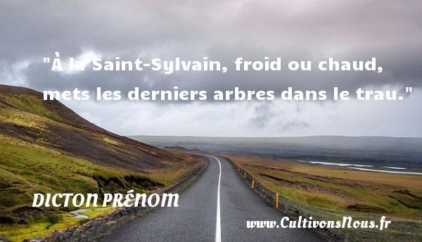 À la Saint-Sylvain, froid ou chaud, mets les derniers arbres dans le trau. Un dicton prénom DICTON PRÉNOM