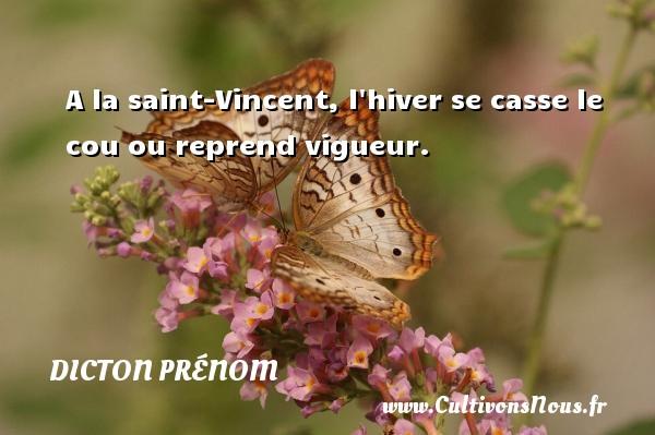 A la saint-Vincent, l hiver se casse le cou ou reprend vigueur. Un dicton prénom DICTON PRÉNOM