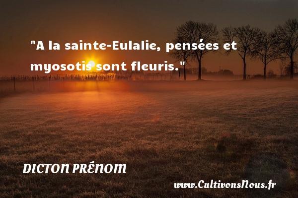 A la sainte-Eulalie, pensées et myosotis sont fleuris. Un dicton prénom DICTON PRÉNOM
