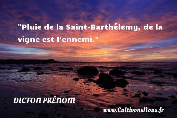 Pluie de la Saint-Barthélemy, de la vigne est l ennemi. Un dicton prénom DICTON PRÉNOM
