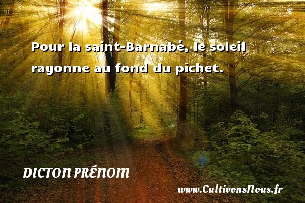 Pour la saint-Barnabé, le soleil rayonne au fond du pichet. Un dicton prénom DICTON PRÉNOM