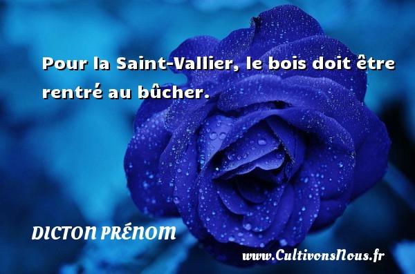 Pour la Saint-Vallier, le bois doit être rentré au bûcher. Un dicton prénom DICTON PRÉNOM