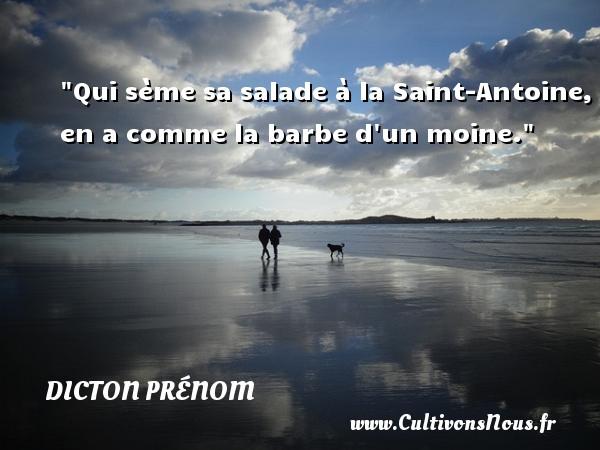 Qui sème sa salade à la Saint-Antoine, en a comme la barbe d un moine. Un dicton prénom DICTON PRÉNOM