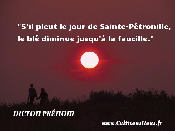 S il pleut le jour de Sainte-Pétronille, le blé diminue jusqu à la faucille. Un dicton prénom DICTON PRÉNOM