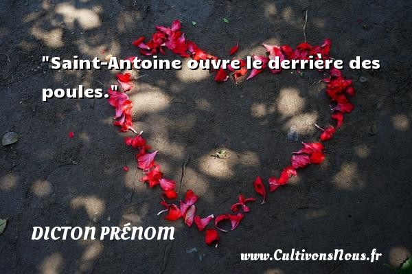 Saint-Antoine ouvre le derrière des poules. Un dicton prénom DICTON PRÉNOM
