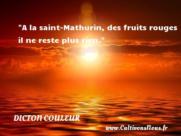 A la saint-Mathurin, des fruits rouges il ne reste plus rien. Un dicton couleur