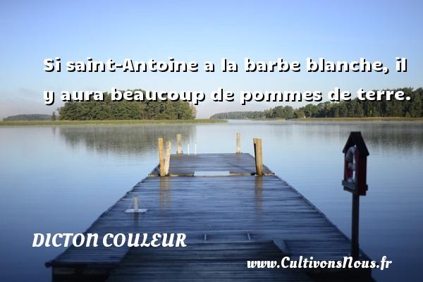 Dicton couleur - Si saint-Antoine a la barbe blanche, il y aura beaucoup de pommes de terre. Un dicton couleur DICTON COULEUR