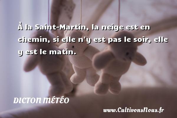 À la Saint-Martin, la neige est en chemin, si elle n y est pas le soir, elle y est le matin. Un dicton météo DICTON MÉTÉO
