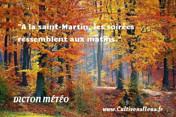 A la saint-Martin, les soirées ressemblent aux matins. Un dicton météo DICTON MÉTÉO