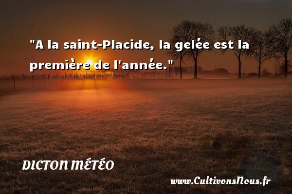 Dicton météo - A la saint-Placide, la gelée est la première de l année. Un dicton météo DICTON MÉTÉO