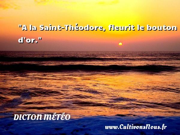 Dicton météo - A la Saint-Théodore, fleurit le bouton d or. Un dicton météo DICTON MÉTÉO