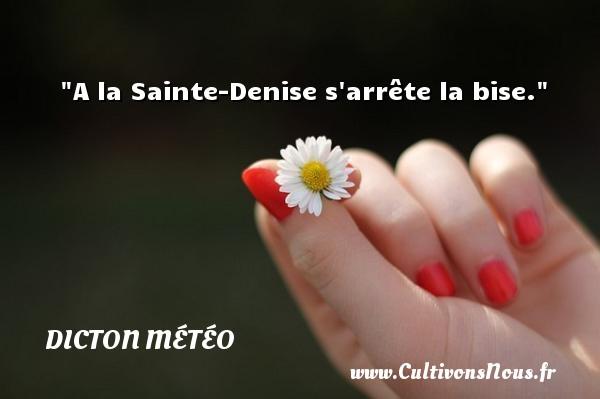 A la Sainte-Denise s arrête la bise. Un dicton météo DICTON MÉTÉO