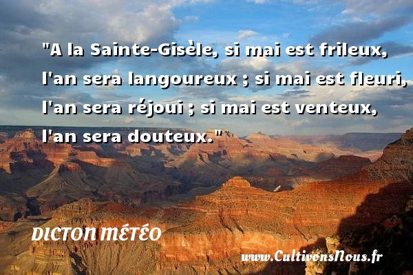 Dicton météo - A la Sainte-Gisèle, si mai est frileux, l an sera langoureux ; si mai est fleuri, l an sera réjoui ; si mai est venteux, l an sera douteux. Un dicton météo DICTON MÉTÉO