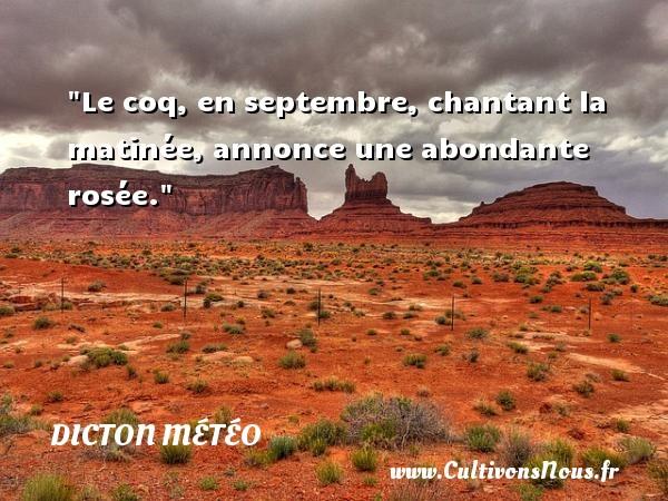 Dicton météo - Le coq, en septembre, chantant la matinée, annonce une abondante rosée. Un dicton météo DICTON MÉTÉO