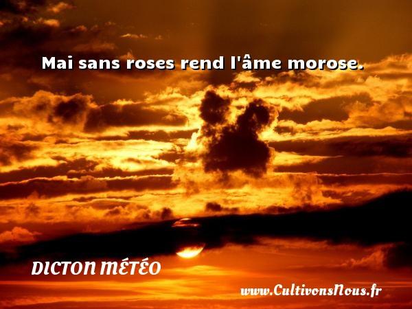 Mai sans roses rend l âme morose. Un dicton météo DICTON MÉTÉO
