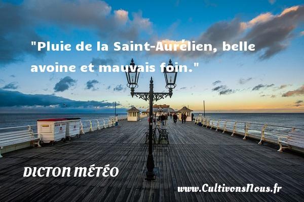 Pluie de la Saint-Aurélien, belle avoine et mauvais foin. Un dicton météo DICTON MÉTÉO