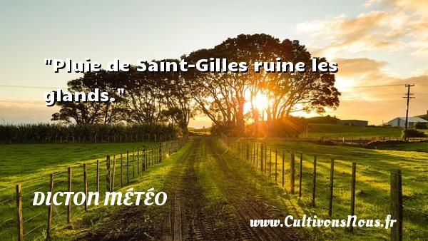 Pluie de Saint-Gilles ruine les glands. Un dicton météo DICTON MÉTÉO
