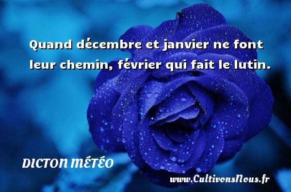 Quand décembre et janvier ne font leur chemin, février qui fait le lutin. Un dicton météo DICTON MÉTÉO