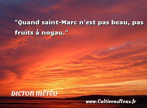 Quand saint-Marc n est pas beau, pas fruits à noyau. Un dicton météo DICTON MÉTÉO