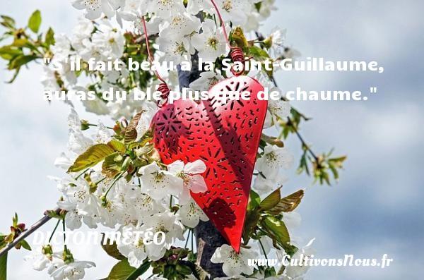 S il fait beau à la Saint-Guillaume, auras du blé plus que de chaume. Un dicton météo DICTON MÉTÉO