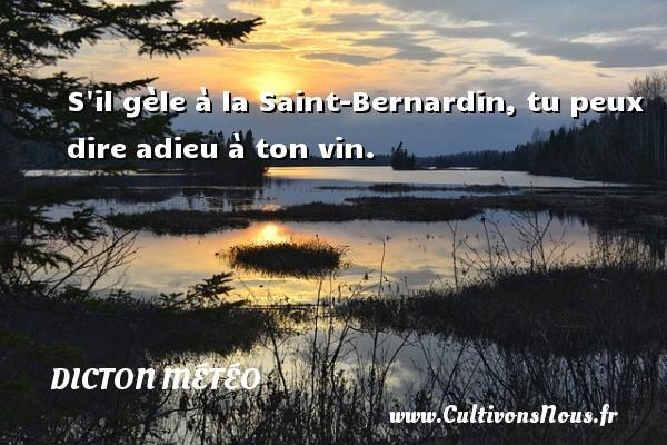 Dicton météo - S il gèle à la Saint-Bernardin, tu peux dire adieu à ton vin. Un dicton météo DICTON MÉTÉO