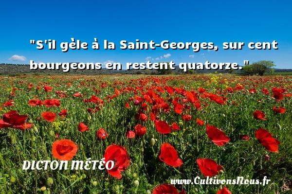 S il gèle à la Saint-Georges, sur cent bourgeons en restent quatorze. Un dicton météo DICTON MÉTÉO