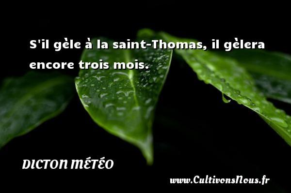 S il gèle à la saint-Thomas, il gèlera encore trois mois. Un dicton météo DICTON MÉTÉO
