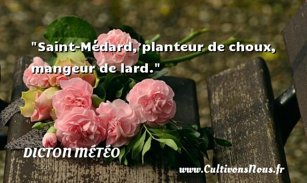 Saint-Médard, planteur de choux, mangeur de lard. Un dicton météo DICTON MÉTÉO