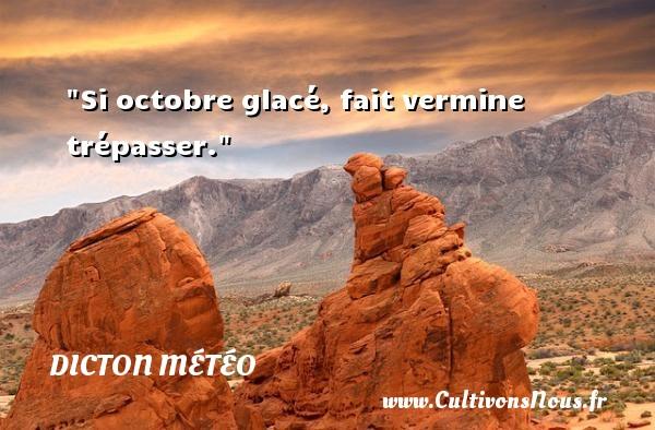 Si octobre glacé, fait vermine trépasser. Un dicton météo DICTON MÉTÉO