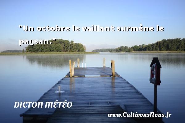Un octobre le vaillant surmène le paysan. Un dicton météo DICTON MÉTÉO