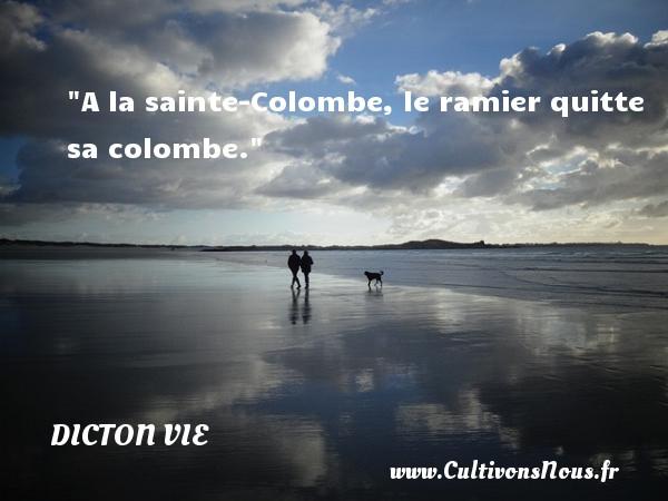 Dicton vie - A la sainte-Colombe, le ramier quitte sa colombe. Un dicton vie DICTON VIE